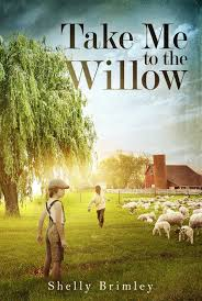 it u0027s raining books take me to the willow by shelly brimley