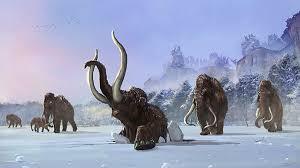 snow giants woolly mammoths behance