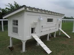 Best Chicken Coop Design Backyard Chickens by Chicken Coop Design Guidelines 6 Amazon Chicken Coop Design