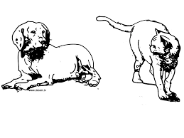 excellent cat and dog coloring pages nice kids 3458 unknown