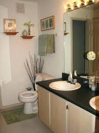 bathroom decorating ideas for apartments apartment bathroom decorating ideas apartment bathroom decorating