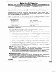 resume summary exles customer service professional summary for customer service resume rep job vesochieuxo