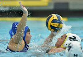 chs polo gallery conqs braves battle in lpl water polo local sports