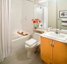 Indian Bathroom Designs Without Bathtub