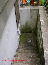basement walkout inspectapedia exterior basement walkout door 2