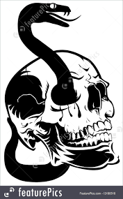 halloween snake skull with snake clip art illustration
