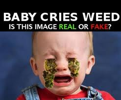Crying Baby Meme - 13 best baby cries images on pinterest cry baby baby baby and babys