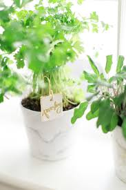 spring gardening 10 diy plant markers apartment therapy