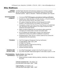 resume sle with career summary www flight attendant resume sales attendant lewesmr