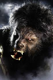 Werewolf Halloween Makeup by 35 Best Wolf Ready Images On Pinterest Wolf Costume And
