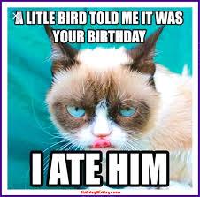 Happy Birthday Meme Dog - most funny birthday meme with dog daily funny memes