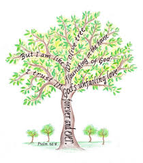 thanksgiving day bible verse tree pictures with scripture verses olive tree drawing