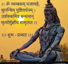 bengal u0026 assam stock discussion forum online india moneycontrol