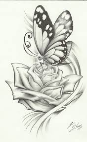 unique sketches of flowers and butterflies 56 with additional with