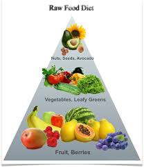 how can the raw food diet weight loss plan help me weight loss