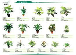 buy indoor tree mini palm tree indoor home decoration mini palm