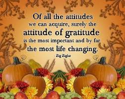 111 best attitude of gratitude abundance images on