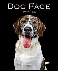 dog coffee table books books james hicks photography