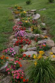 rock garden in the meadow fill with annuals until the perennials