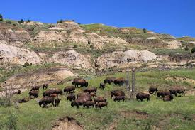 North Dakota national parks images Theodore roosevelt national park adventures of a couchsurfer jpg