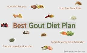 best gout diet recipes