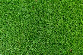 Inexpensive Patio Flooring Options by Inexpensive Patio Flooring Options Small Modern Backyard Garden