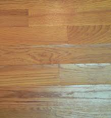 repair how to fix hardwood floor moisture damage home