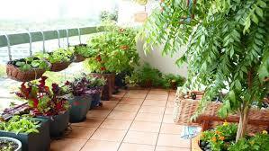 Herb Garden Design Ideas Balcony Herb Garden Pots Small Balcony Garden Design Ideas Balcony