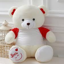 big teddy multicolored teddy teddy big teddy best gift