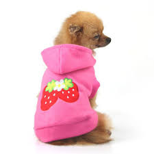 Cute Dog Products by North Face Dog Promotion Shop For Promotional North Face Dog On