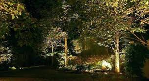 Landscape Lighting Trees Landscape Up Lighting Landscape Lighting Trees In Ma