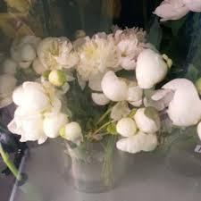 Wholesale Flowers Miami Unlimited Flowers 50 Photos U0026 16 Reviews Florists 13500 Sw