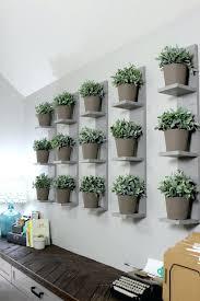 plant wall hangers indoor plant wall shelf macky co