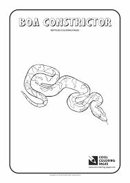 mortal kombat coloring pages reptile contegri com