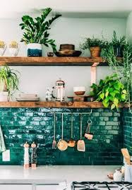 plante cuisine plantes d intérieur plante verte intérieur détente jardin