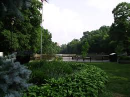 City Of Cincinnati Flag Cincinnati City Parks Levy Stirs Passion For And Against Wvxu
