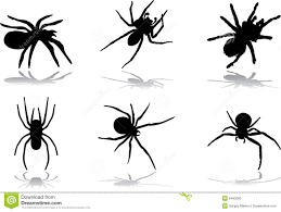 77 spiders for halloween royalty free stock photo image 6483005