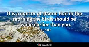birds quotes brainyquote