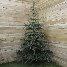 nobilis fir christmas tree 7ft fizzco amazon co uk kitchen u0026 home