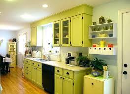 lime green kitchen ideas lime green kitchen cool light green kitchen cabinets light green