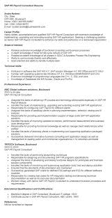 it consultant resume sales consultant resume sle topshoppingnetwork