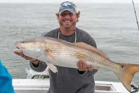 hilton head fishing charters island fish guides charter boat