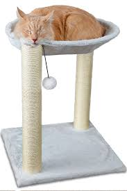amazon com paws u0026 pals cat tree house with scratching post tower