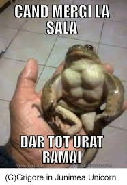 Meme Ge - cand mergi la sala rama download meme ge cgrigore in junimea