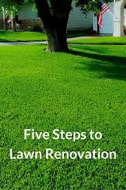 best 25 lawn ideas on pinterest edging ideas lawn maintenance