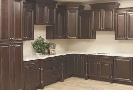 kitchen view kitchen cabinets delaware popular home design
