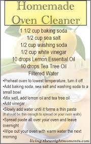 Homemade Upholstery Shampoo Best 25 Homemade Oven Cleaner Ideas On Pinterest Natural Oven