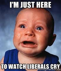 Meme Generator Crying - i m just here to watch liberals cry crying baby meme generator