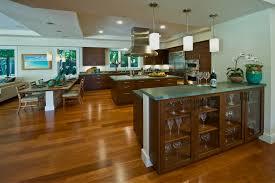 surprising idea hawaii home design hawaiian style designs and