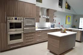 contemporary kitchen cabinetry designs